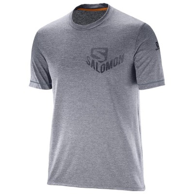 Tee Shirt SALOMON Pulse Homme ombre blue