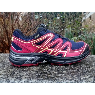 AH18 WINGS FLYTE 2 GTX Femme evening blue/beet red/sunny lim