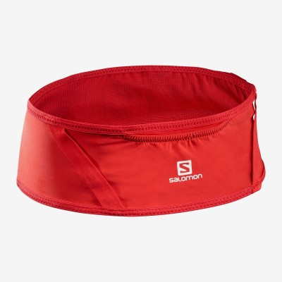 Ceinture SALOMON Pulse Belt goji berry