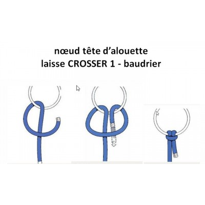 Laisse Canicross INLANDSIS...